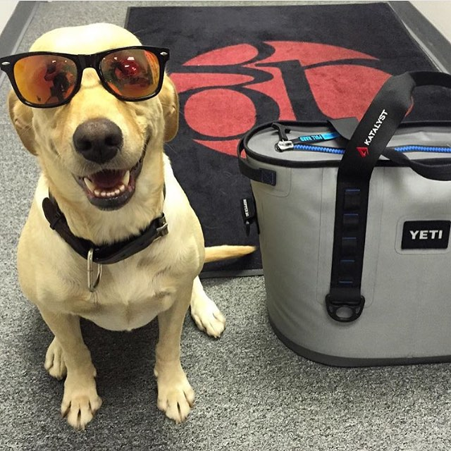 She is ready for her next fishing trip! Are you? #brandedsunglasses #customembroidered #yeticoolers  #dunstangroup